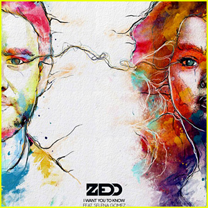 Zedd ft. Selena Gomez - I Want You To Know  无和声伴奏