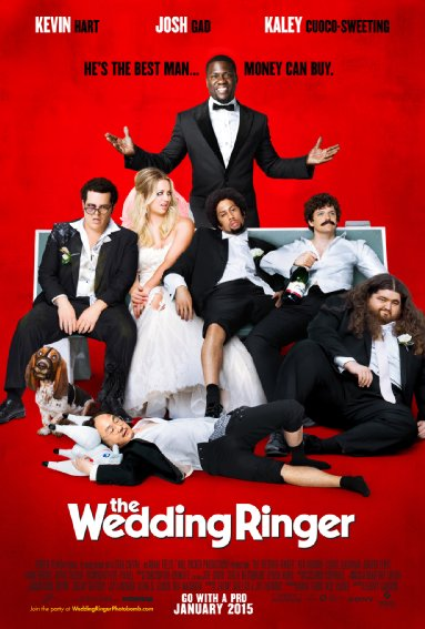 The Wedding Ringer (2015) 720p BRRip